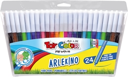 Picture of TOY COLOR ARLEKINO superwashable Color Pen 1-24