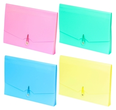 Picture of PVC EXPANDING FILE A4